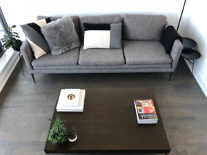 Good Article Couch   Barely Used Less Than A Year Old