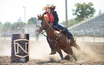 Understanding Barrel Racing