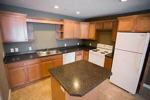 Spectacular 2 br Apartment | Available April 1st | East Regina