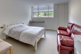 CHOOSE IT OR LOOSE IT! LOVELY DOUBLE JUST NEAR CANNING TOWN STATION