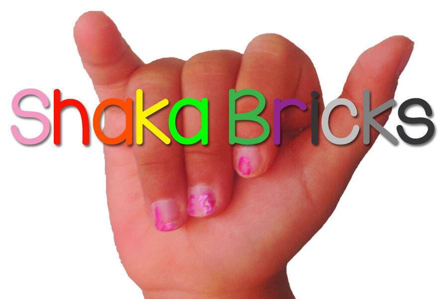 Shakabricks