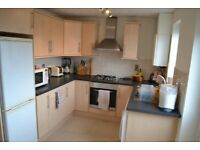 Tranmere 2 bed house for rent
