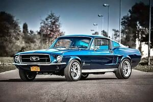 Ford Mustang fastback *WANTED* 67/68