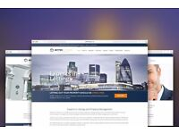 Professional Website Design and Development from £249