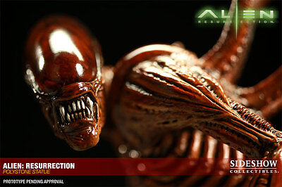 SIDESHOW EXCLUSIVE ALIENS ALIEN RESURRECTION STATUE FIGURE BUST WITH HYBRID RARE