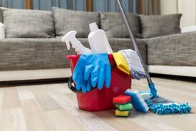 🏡Hire your Professional House Cleaner! Oven, Windows, Fridge, Ironing and more services included!