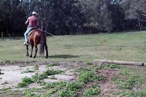 Southwest horseman Mount Crosby Brisbane North West Preview