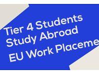 Study Australia, Canada,** Work Permit Europe, **Ireland job placement, Tier 4 students
