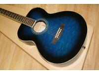 Freshman Renegade Blue Guitar + Soft Case + Stand + Tuner + Books