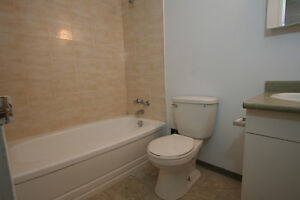 Beautiful bright 1 bedroom apartment in the heart of downtown
