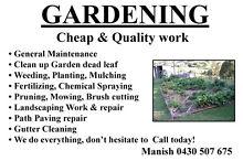cheap Gardening service Kew Boroondara Area Preview