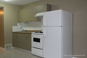 1 Bedroom Newly Renovated in Callingwood for Rent