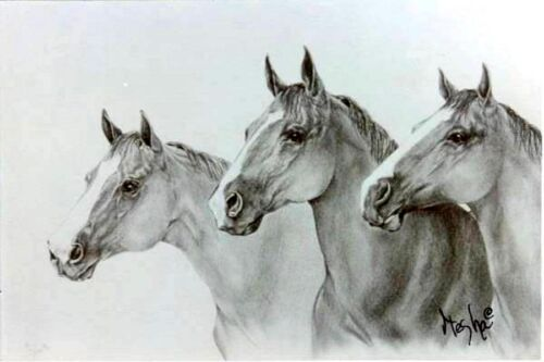 "Limited Edition HORSE ART PRINT ""Quarter Horse Beauties"" S/N by Artist 17"" X 22"
