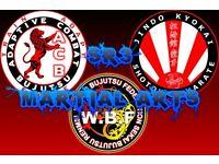 Karate japanese jujutsu adaptive combat bujutsu martial arts Lessons