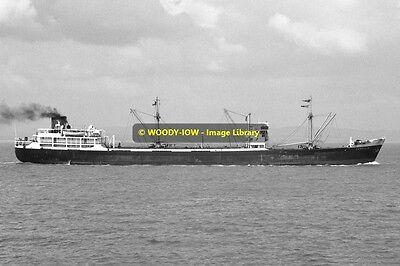 mc0586 - Stag Line Cargo Ship - Camellia , built 1953 - photo 6x4