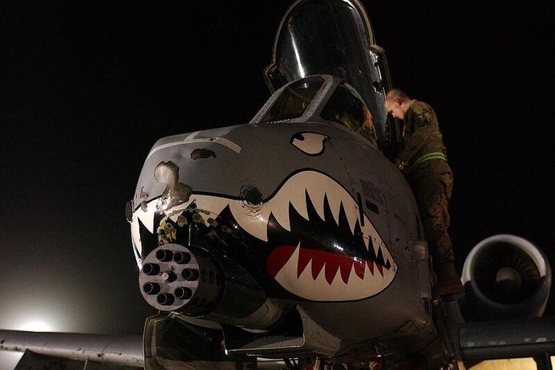 A-10 THUNDERBOLT NOSE ART 8x12 SILVER HALIDE PHOTO PRINT