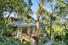 Whale Tree Retreat- Tranquil Home Amongst the Tree Tops Palm Beach Pittwater Area Preview