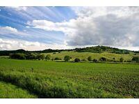 Croft / Farm land wanted