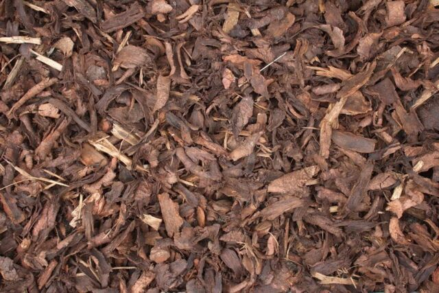 popular brand 100% top quality delicate colors Bark Chippings | in Denny, Falkirk | Gumtree