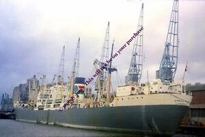 mc1445 - Palm Line Cargo Ship - Africa Palm , built 1953 - photo 6x4