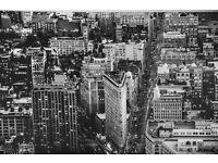 IKEA Canvas of New York skyline
