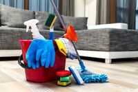 Cleaning Services - Everyday