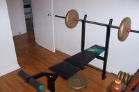 Bench Press York 110 - 150 lbs de poids