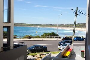 Maroubra Beach Front apartment available   26/01/17 - 26/02/17 Maroubra Eastern Suburbs Preview