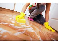 Experienced house cleaner. Spring and deep cleaning service.