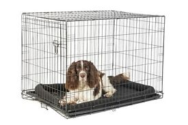 Large single door dog crate