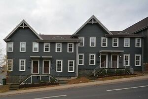 3 LEVEL NEWLY RENOVATED TOWNHOUSES ON MEADOWBROOK DRIVE