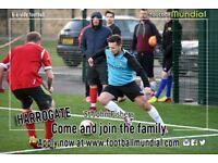 Harrogate 6 a side leagues - New teams welcome!
