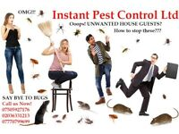 Guaranteed Pest Control of Rat, Mice, Cockroaches, Bedbugs, Wasps, Ants, Fleas, Moth, Spiders etc