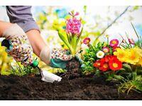 Gardening and Garden Maintenance