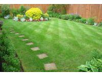 🍃4 seasons garden maintenance specialists🍃 FROM £10. Free Quotes / gardener / gardening.