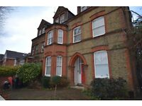 Large two bed property in Chiswick (very spacious)