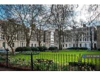 2 bedroom flat in Oval, London, SW8 (2 bed)