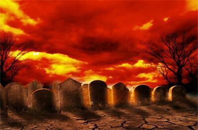 Graveyard Halloween Grunge Photography Backdrop 7x5ft Background Studio Props (Graveyard Backdrop)