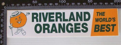 VINTAGE RIVERLAND ORANGES WORLD