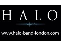 Halo Band London - Seek Bass Guitarist