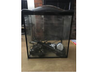 Fish Tank, Light, Pump and Food - 17 Litres