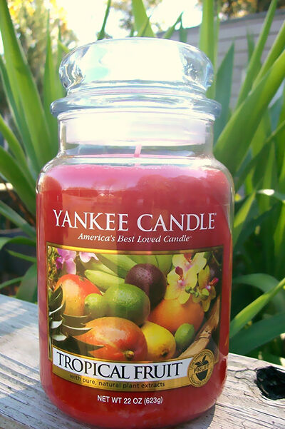 Tropical Candle Scents