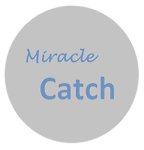 Miracle Catch
