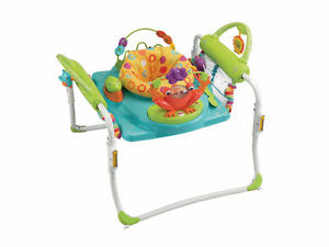 Brand New Fisher-Price First Steps Jumperoo (Jumper and walker)