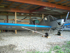ultralight airplane FP 303 For Sale with Rotax 277