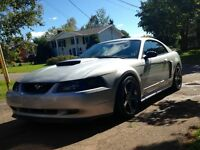 2002 Ford Mustang GT Coupe (2 door) -Customized, Fully Loaded