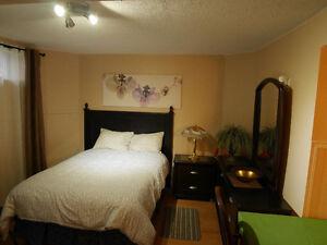 Beautiful Southside Basement Suite