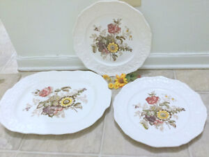 (Tray + 17 Plates) Mason's Antique Ironstone 1950s Porcelain Vin