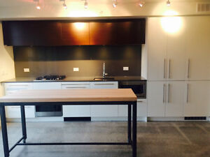 **BRAND NEW 1 Bedroom Apartment ** in Gastown / Chinatown