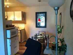 Lovely furnished one Bedroom